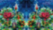 zoom背景 shin Plasma Art AB_6.jpg