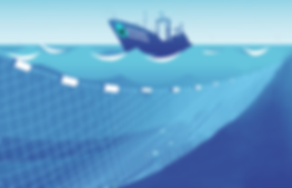 ocean-shapers-collection-process-intro.p