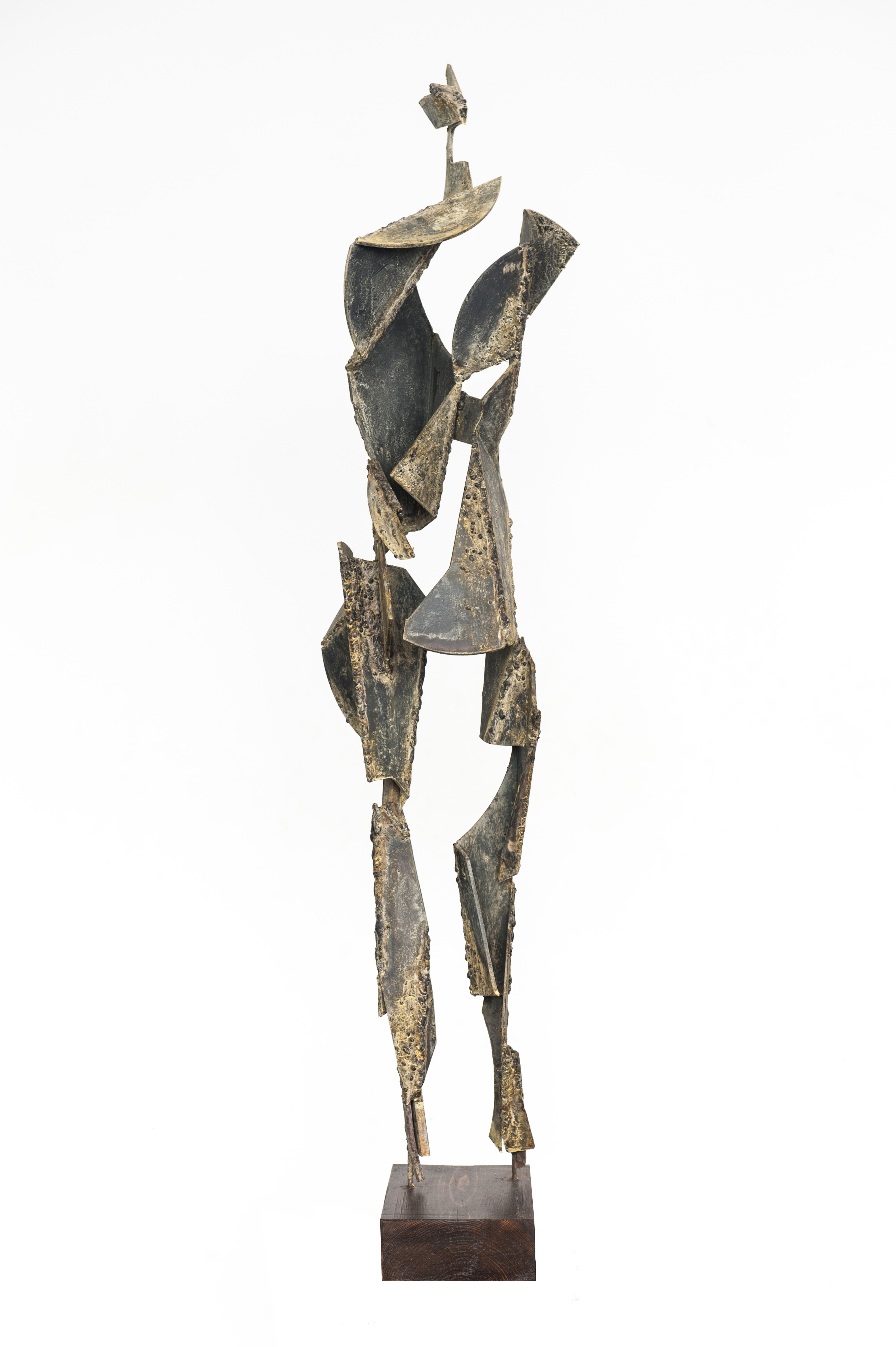 africana. alt. 117 cm. 10-11-13