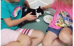 eartha kitt adopt
