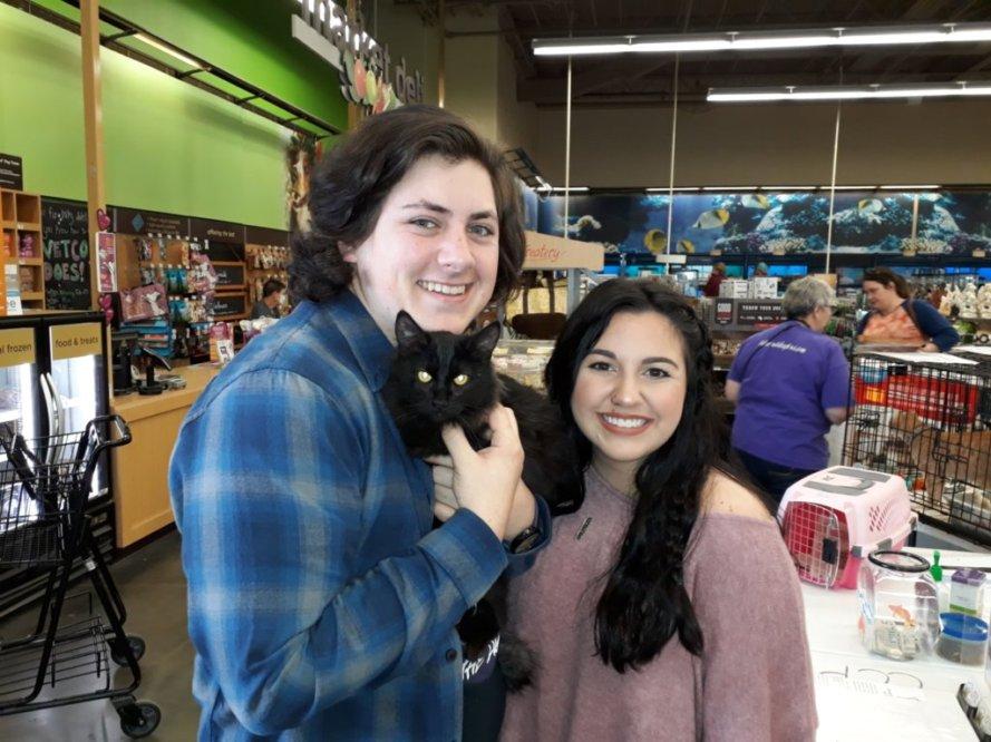 Salem adopt