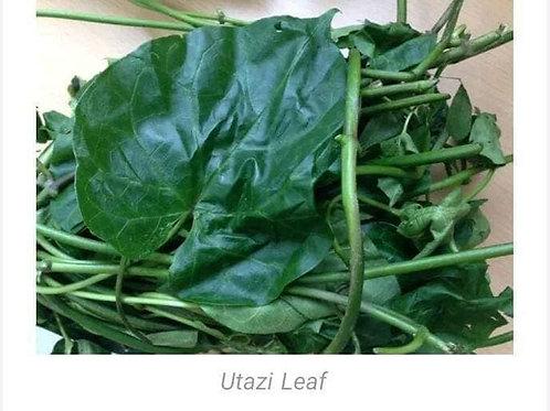 Utazi Leaf dried