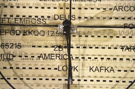 """registro da exposição """"Arte Contemporânea [2000-1] Pernambuco"""". MAM-BA, 1999"""