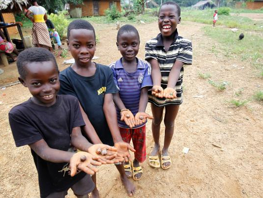 The recent increase in the orphan population in Liberia