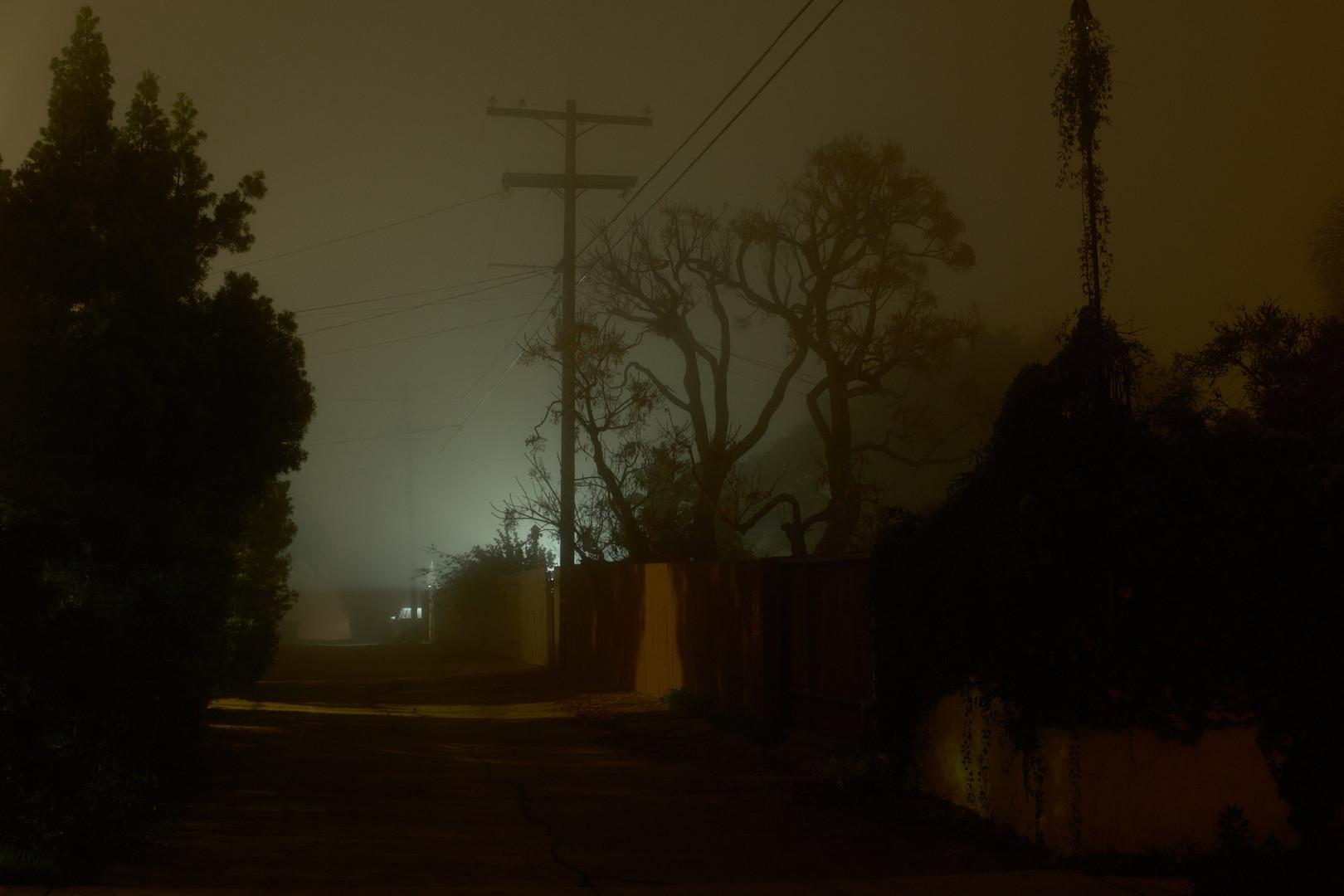 night_walk_2.jpg