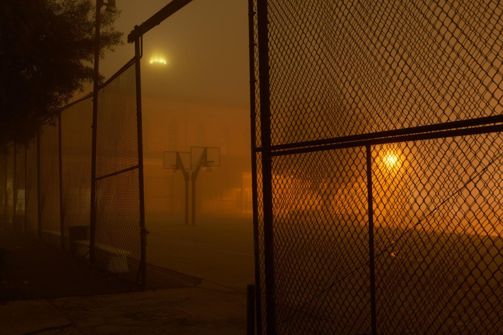 night_walk_3.jpg