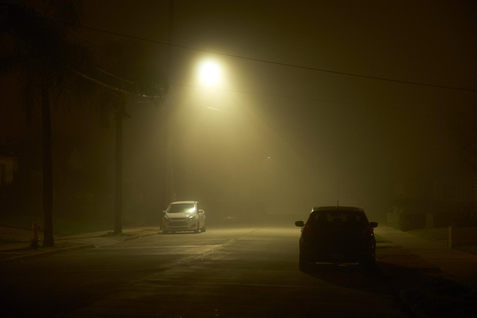night_walk_1.jpg