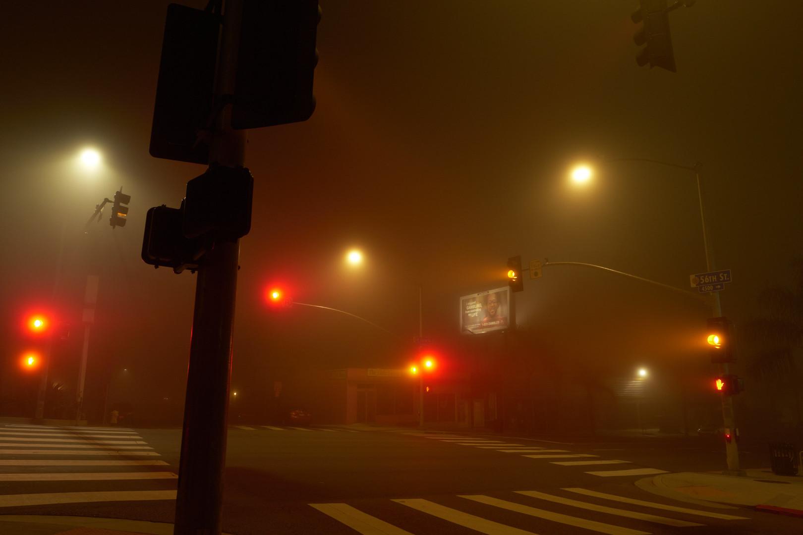 night_walk_6.jpg