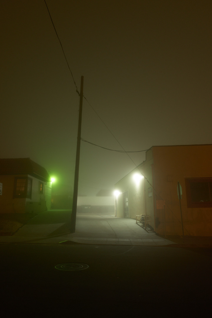 night_walk_4.jpg