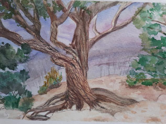 Joy Grand Canyon Tree.jpg