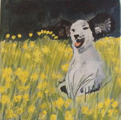 Jean H dog