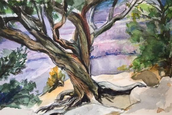 Hatsue Grand Canyon Tree.jpg