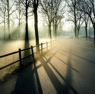 fog-6126432_1920.jpg