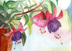 Lesley Fuchsia Card