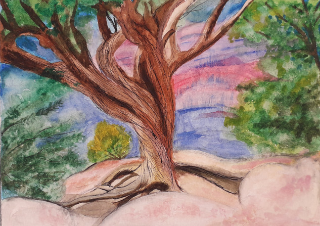 Jenny Grand Canyon Tree.jpg