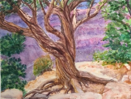 Jill Grand Canyon Tree.jpg