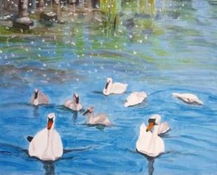 Judy swans.jpg