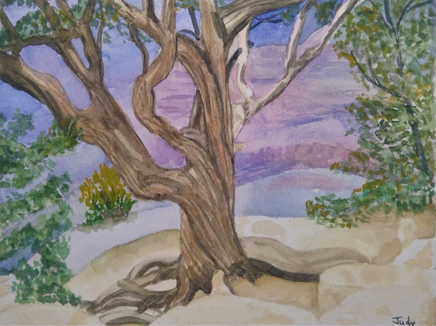 Judy Grand Canyon tree.jpg