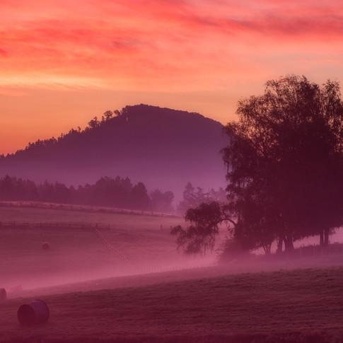 sunrise-5572962_1920.jpg