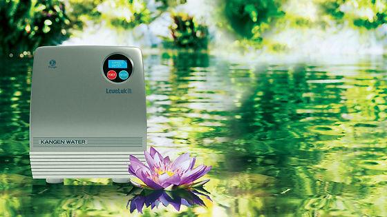 Type R Kangen Water Machine