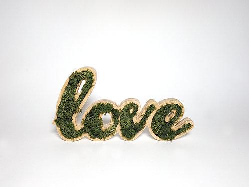 Placa Decorativa Moss Lettering - LOVE