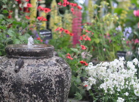 Bursting with Summer Colour at BLOOM 2018