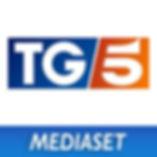 tg5.jpg
