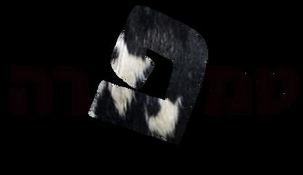טמפרה-שחור.png