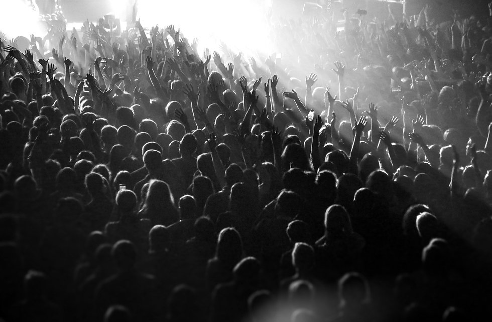 crowd2_edited.jpg