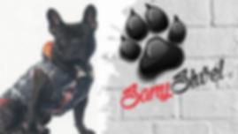 Manteaux/ impermeables pour chien