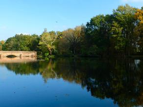 Bridge & Lake