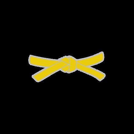 picto_ceinture_jaune.png