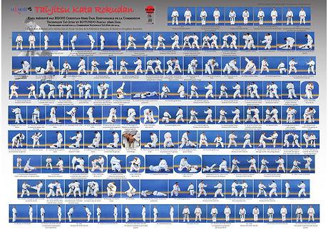 kata-rokudan-tai-jitsu-officiel