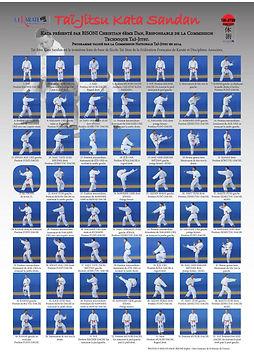 kata-sandan-tai-jitsu-officiel