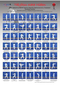 kata-nidan-tai-jitsu-officiel