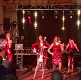 Electric String Quartet for a private party