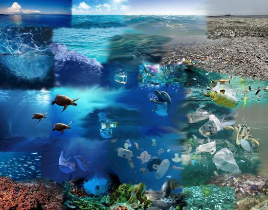 Ocean Timeline