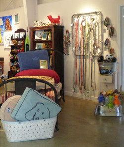 Gifts and Accessories for Fido