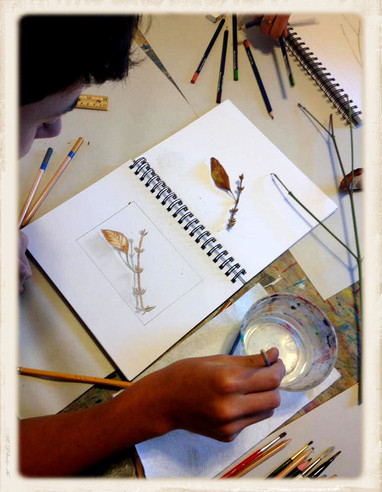 Botanical Art Class AE.jpg