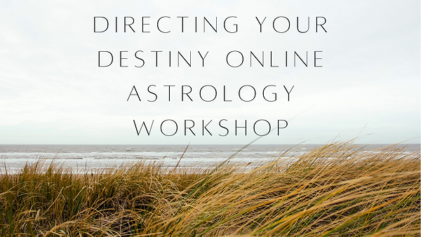Directing your Destiny Online WS FB Cove