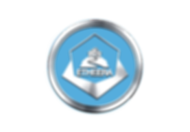 Etheera Logo Silver.png