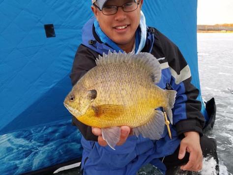Panfish Report 1/23