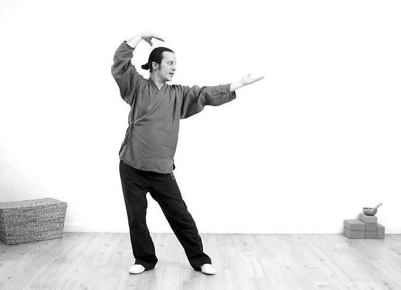 franck goeury qee myqee qi gong qigong taichi méditation shiatsu