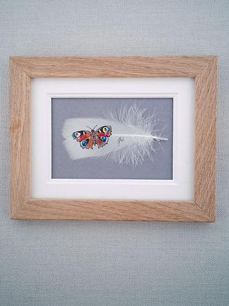 framed peacock butterfly.jpg