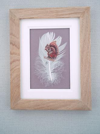framed red squirrel.jpg
