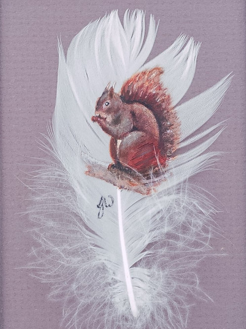'Tufty Red Squirrel'