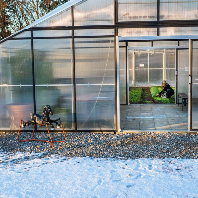 Gewächshaus ernte im Winter