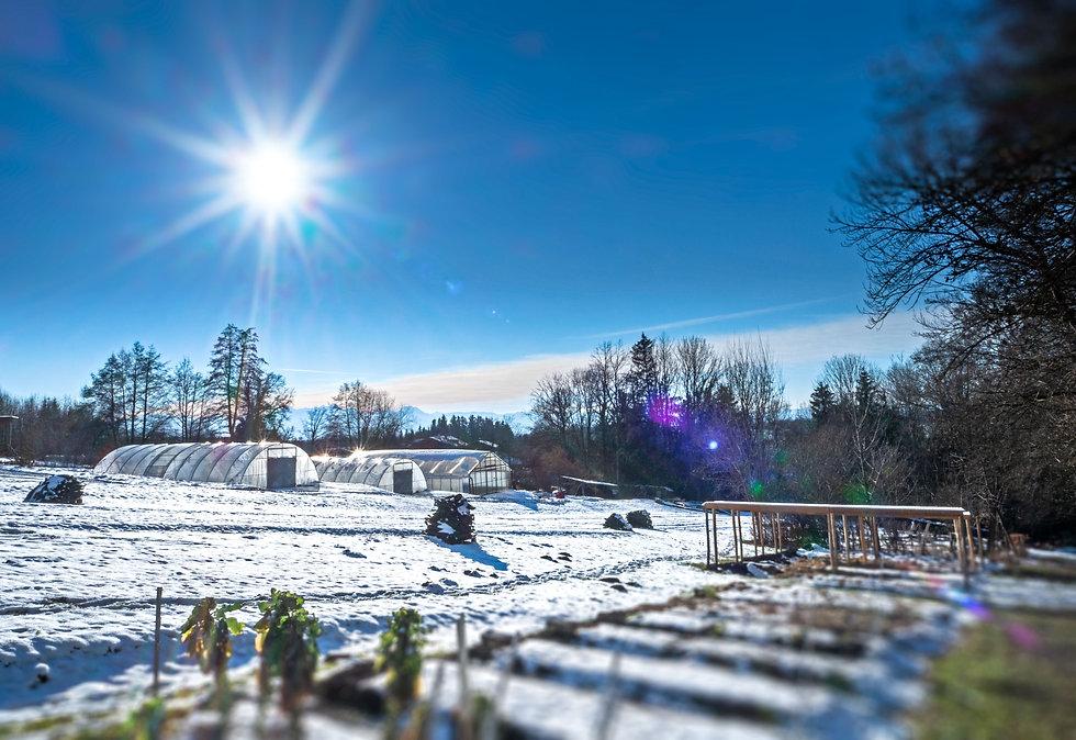 Gärtnerei Winter.jpg