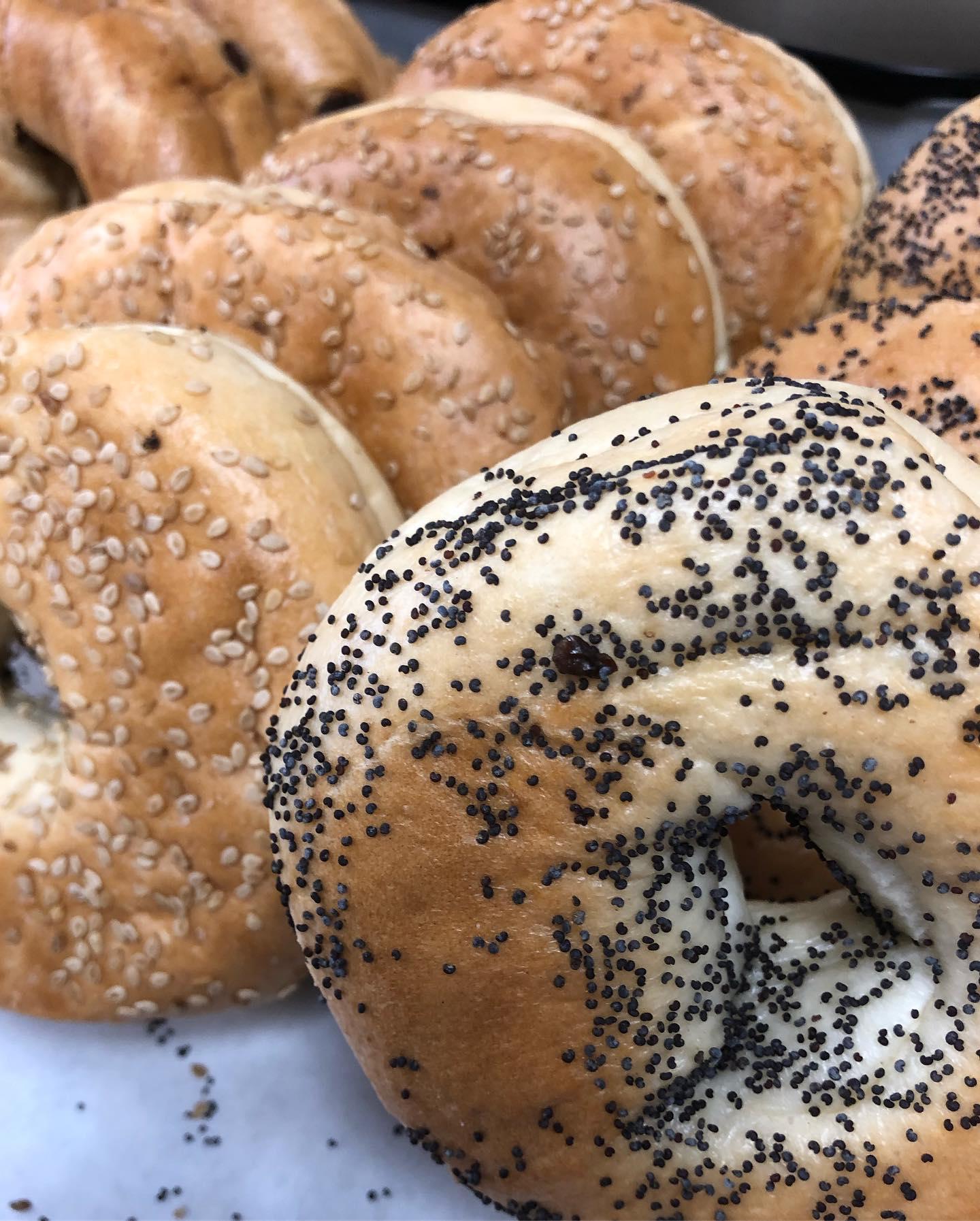 Food - Bagels - UM