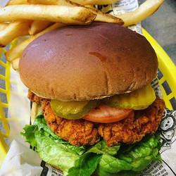 Spicey Fried Chicken Sandwich - UM